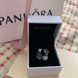 Pandora Charm Bundle